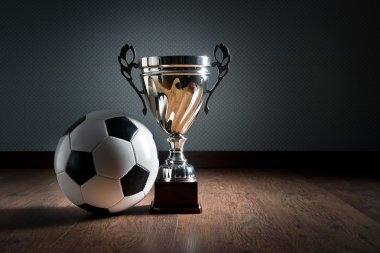 Soccer championship cup