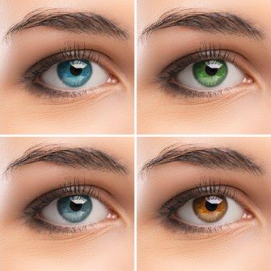 Female colorful eyes