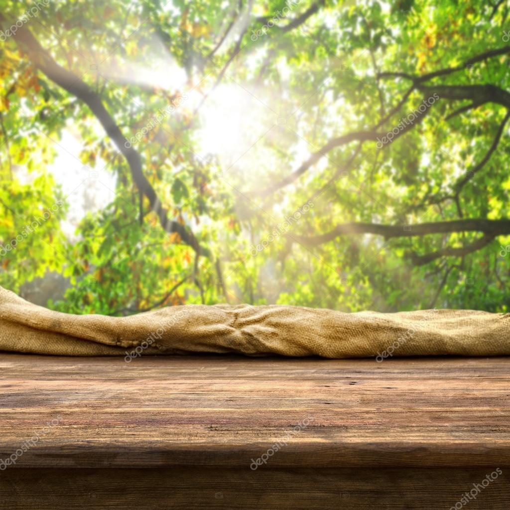 Leere Tabelle und Baum verzweigt sich — Stockfoto © kwasny222 #63087925