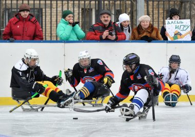 Sledge hockey players on the background of spectators