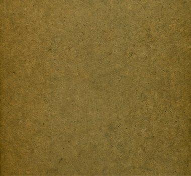 Wooden surface. Texture