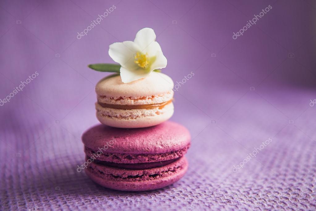 French macarons with white flowers stock photo lakschmi 124243844 french macarons with white flowers stock photo mightylinksfo