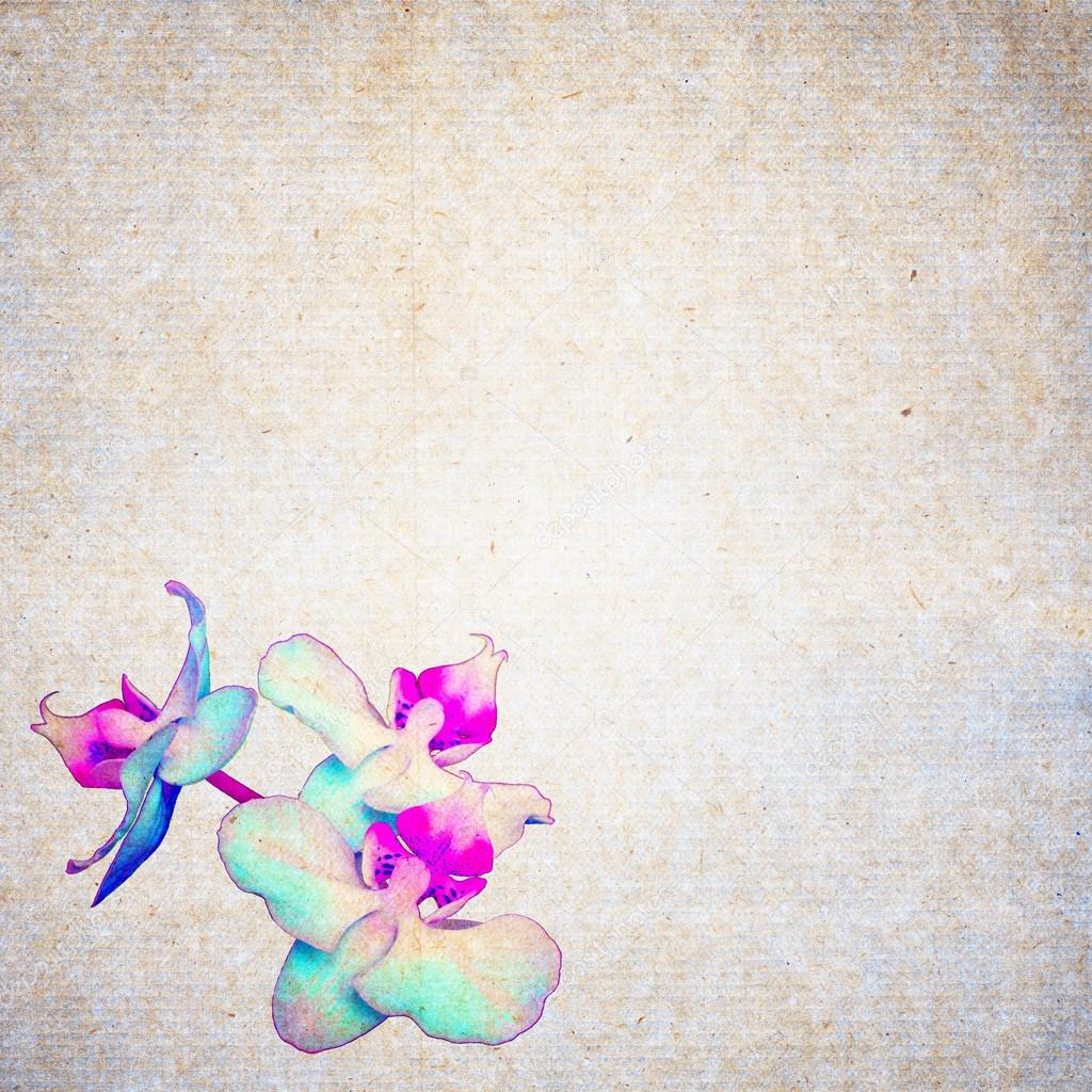 Textured Old Paper Background With Flower Stock Photo Leksustuss
