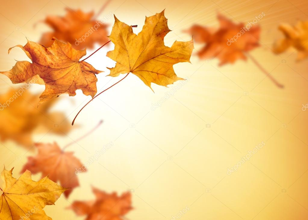 fall background with falling autumn leaves stock photo pics4ads