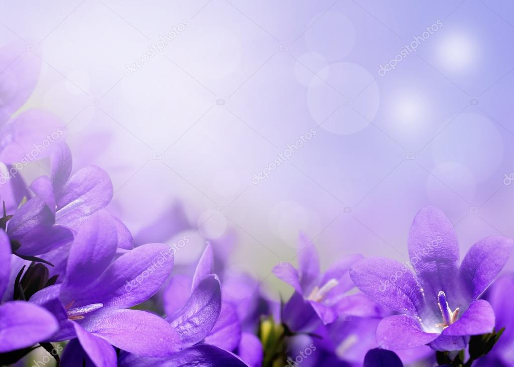 Abstract Spring Flowers Background With Purple Flowers Stock Photo