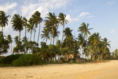 Sunset on Tangalle beach,  Sri Lanka