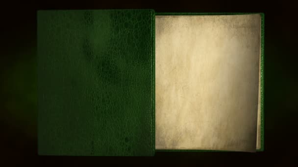 Old blank green book
