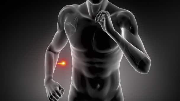 běžící muž s srdeční tep trasování
