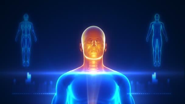 Lidský mozek technologie rozhraní