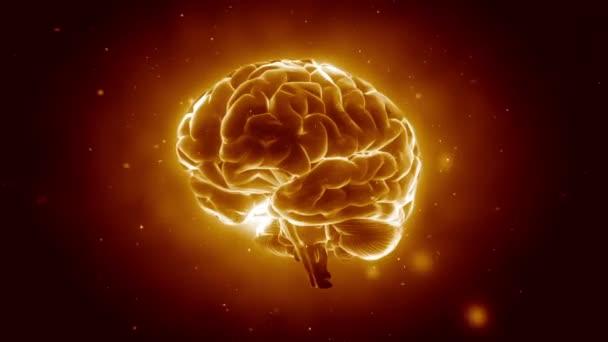 Velké silné mozku pulzující