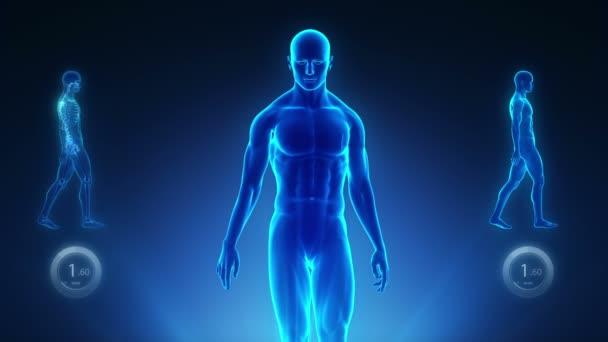 Dobré držení těla koncept