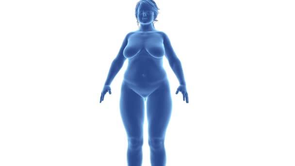 weiblich - an Übergewicht abzunehmen