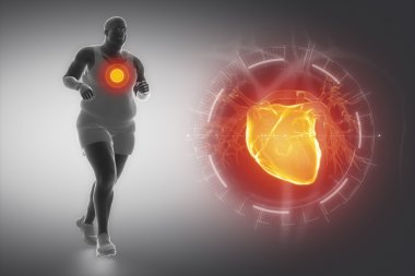 Obesity, sport and heart