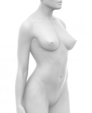 White naked female body