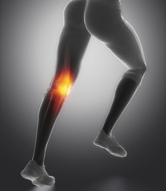 Knee and meniscus in sports injuries