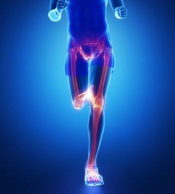 Running man with leg scan