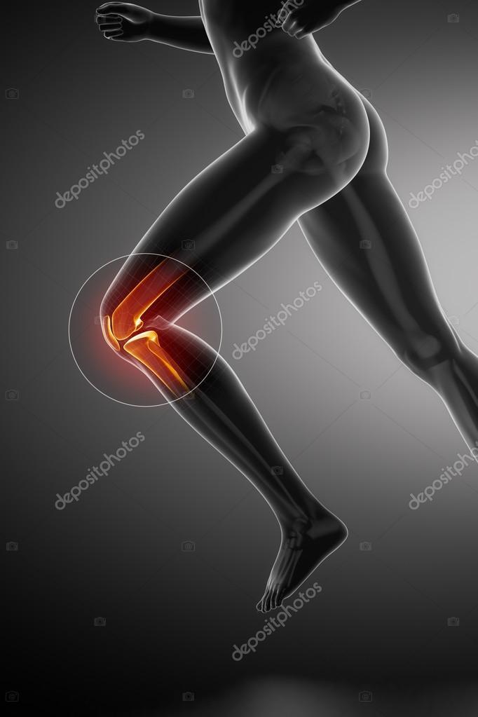Mujer corriendo con la anatomía de la rodilla — Fotos de Stock ...