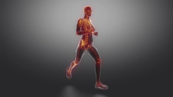 Mann mit sichtbarem Skelett