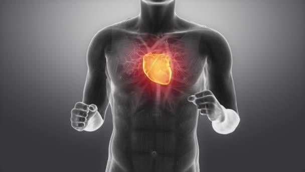 Běžící muž s bušícím srdcem