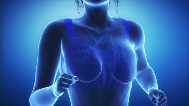 Jogging žena s srdce scan