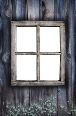 Creepy old window