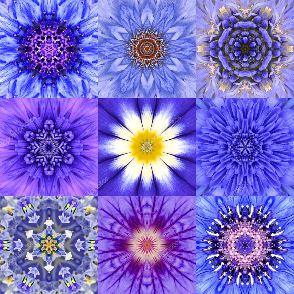 Collection of Nine Blue Concentric Flower Mandalas Kaleidoscope
