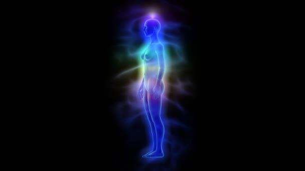 Lidské energetické tělo (aura) s čakry - žena