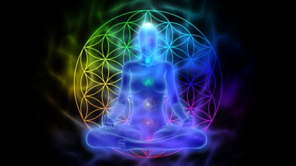 Meditace - aura, čakry, symbolem květu života