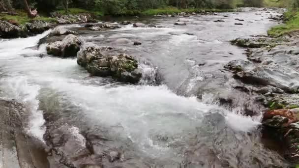 Mountain river cascades over rocks.
