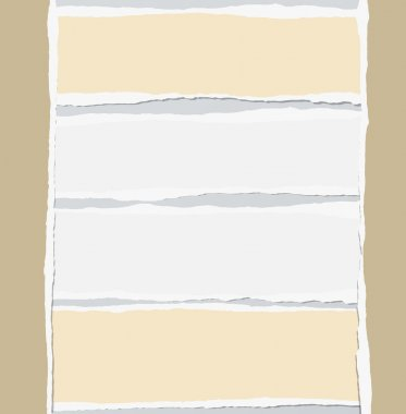 Pieces of torn white and brown blank paper are stuck on gray background