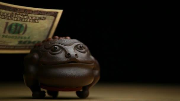 záběry ropuchy peníze tmavé pozadí