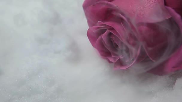 felvételek virág füst hó háttér