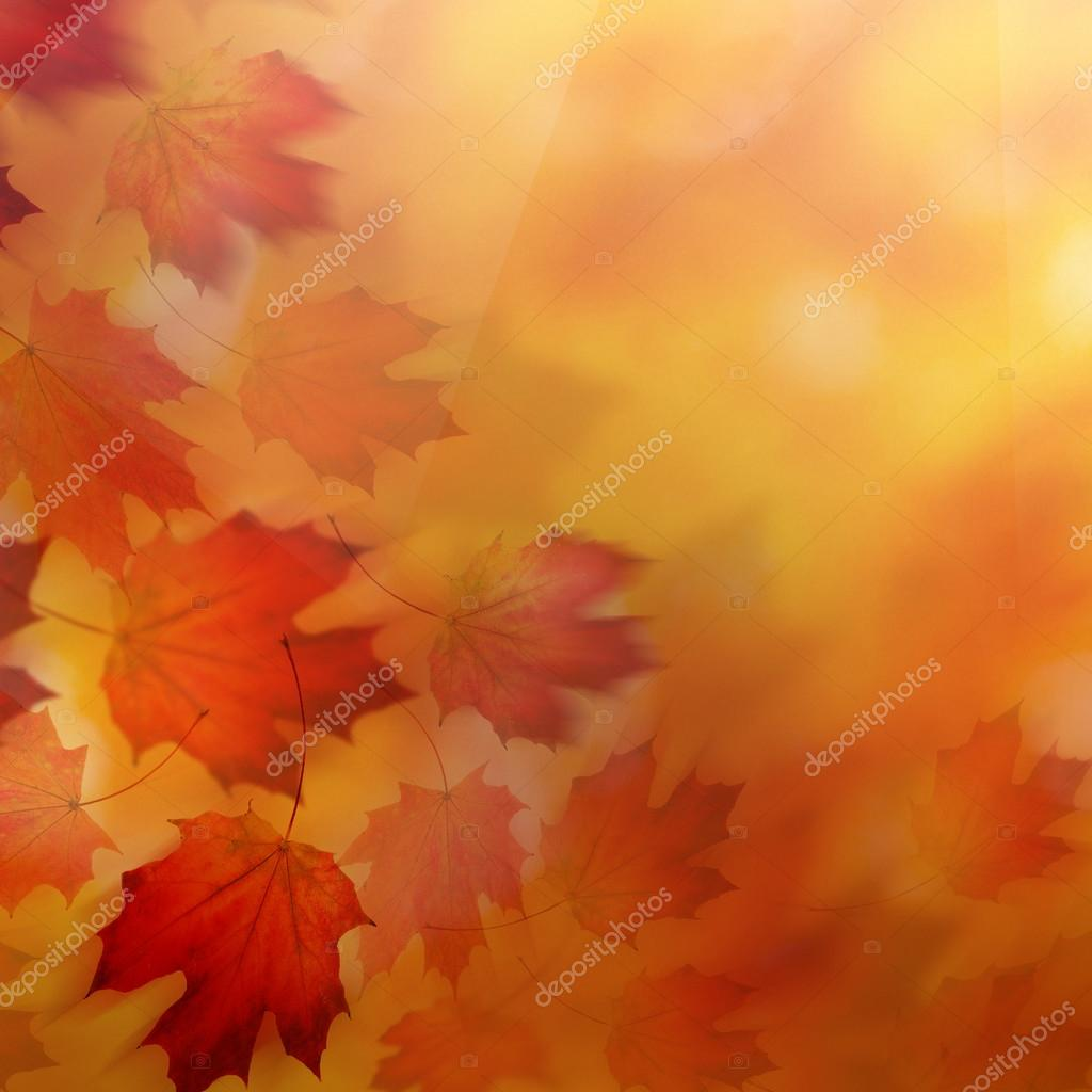 Abstract Autumn Background With Red Fall Leaves Stock Photo C Millafedotova 124629314