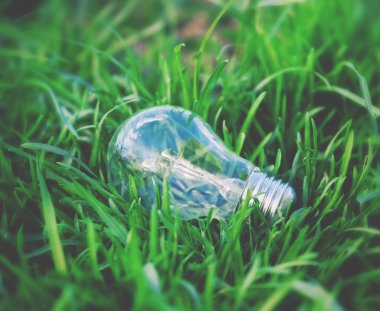 Light bulb in a grass. Environment,  energy and  idea concept.