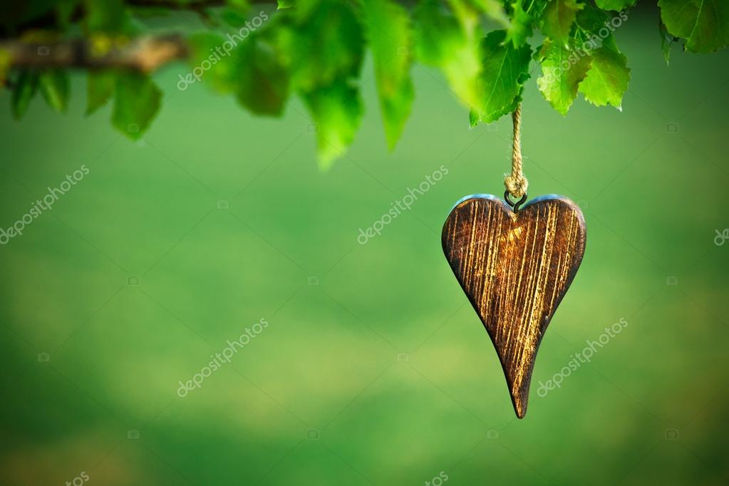 Wooden shape of heart on natural green background