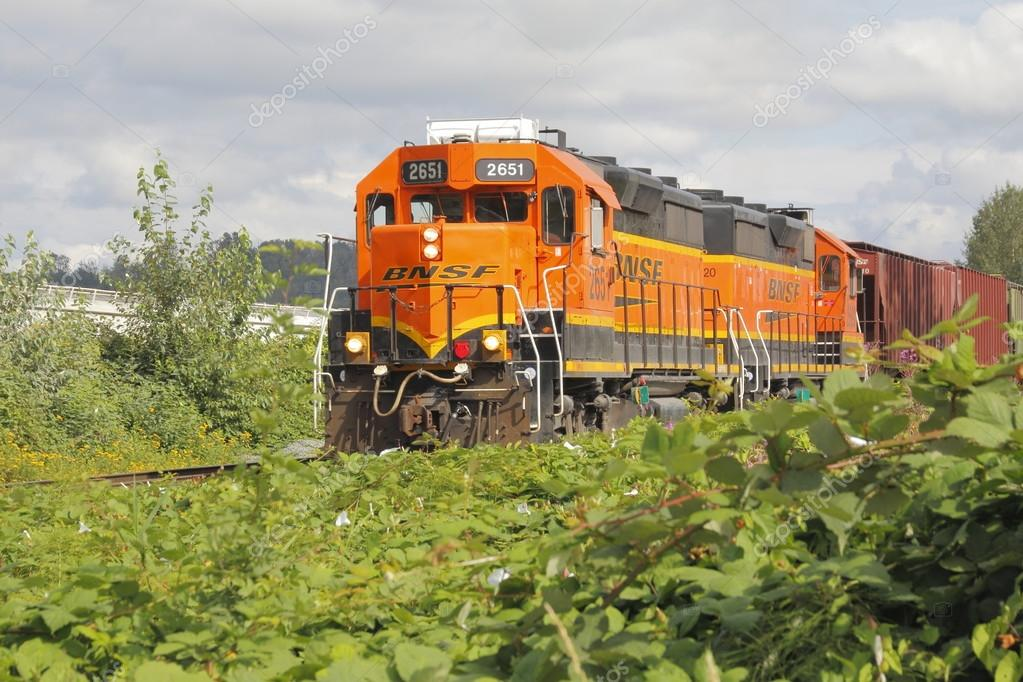 Treno merci bnsf in canada foto editoriale stock for Piani di washington