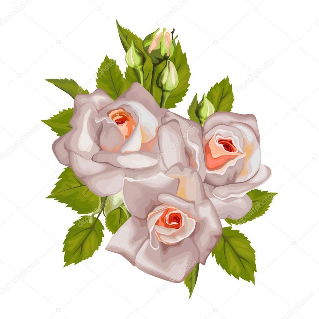 Beautiful bouquet of roses isolated on white. Perfect for background greeting cards and invitations of the wedding, birthday, Valentine's Day, Mother's Day.