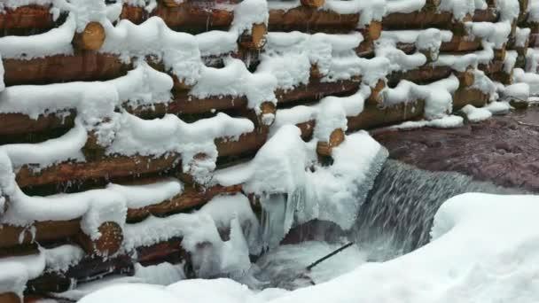 Stěna z klád obklopuje malý potok v lese poblíž holých stromů