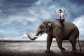 Asiatischer Geschäftsmann reitet Elefant