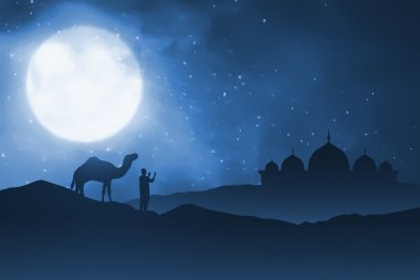 Silhouette of man and his camel