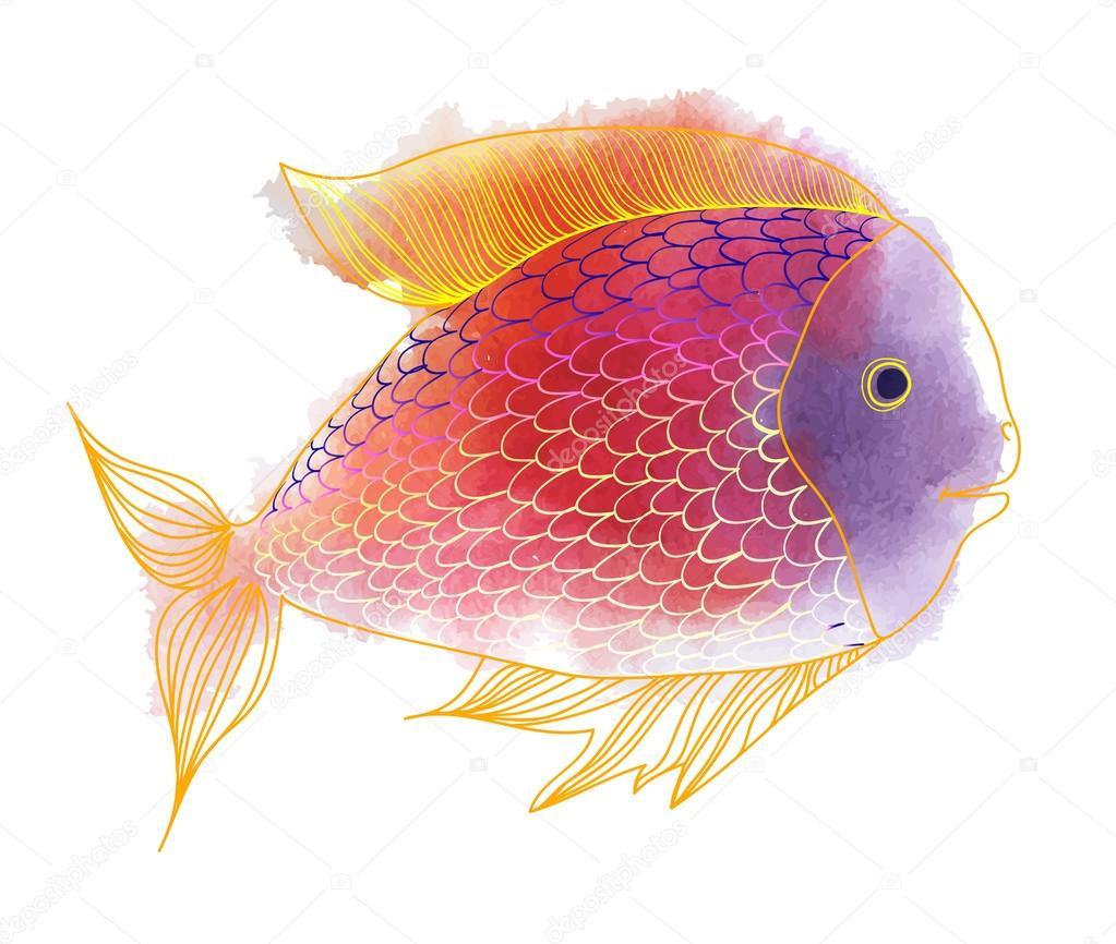 Watercolor bright fish — Stock Vector © lyudo #72109903