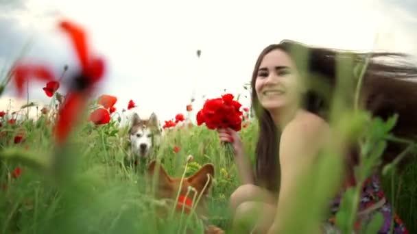 zblízka šťastné ženy hrát se dvěma psy v makovém poli zpomalené