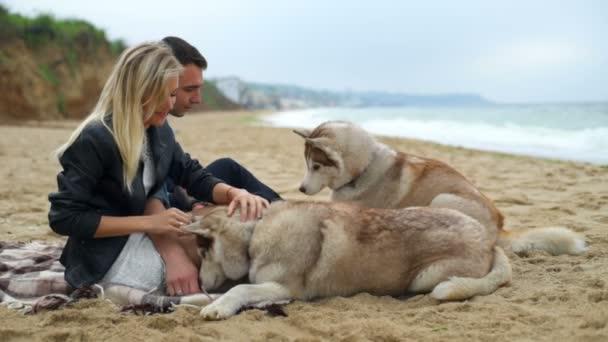 muž a žena s jejich psy husky na pláži Zpomalený pohyb