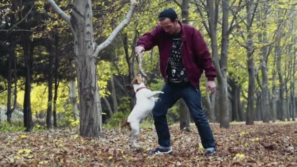genç adam sonbahar Park iki köpek ile oynarken