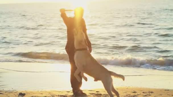 Junger Mann spielt mit Hund am Strand in Zeitlupe