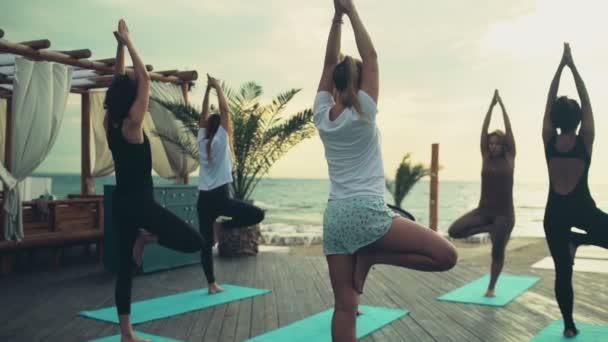 skupina žen cvičí jógu na pláži Zpomalený pohyb