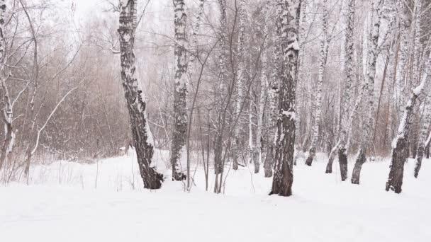Wintersport- und Unterhaltungspark. Skifahrer gehen auf die Piste