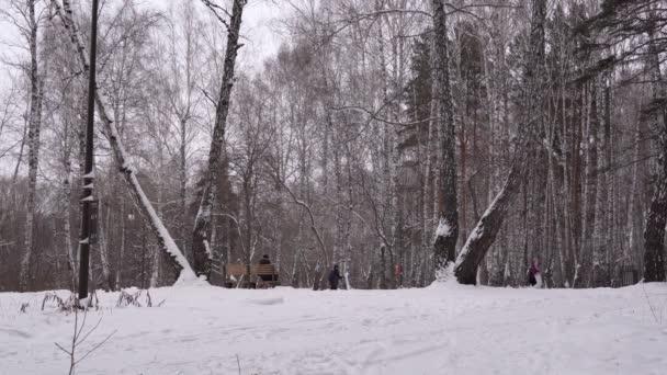 zimní sportovní a zábavní park. lyžaři, turisté v zimě