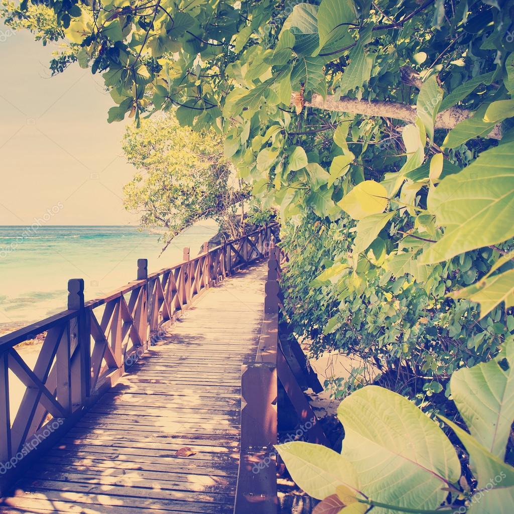 Tropical Walkway
