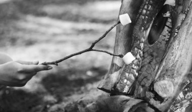Roasting Marshmallows Black and White